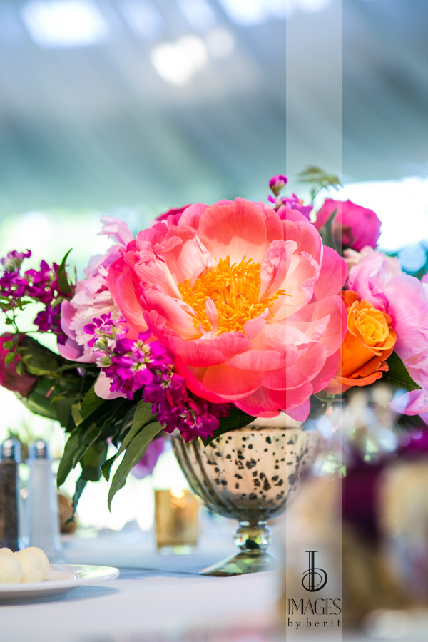 peonies flower display